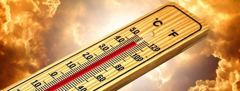 Bild mit Thermometer
